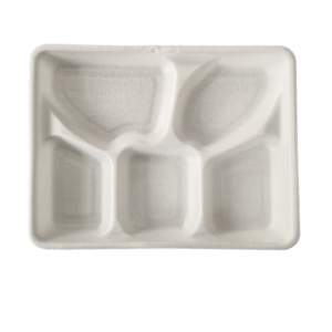 PLA Foam Tray 5-Compartment 26×21 h3cm